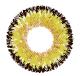 3 Sunshine Yellow Tricolor